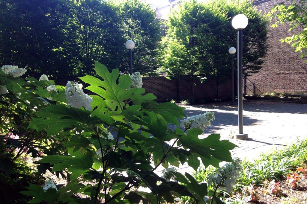 5-bc-south-garden